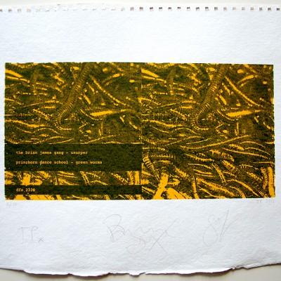 green worms screenprint